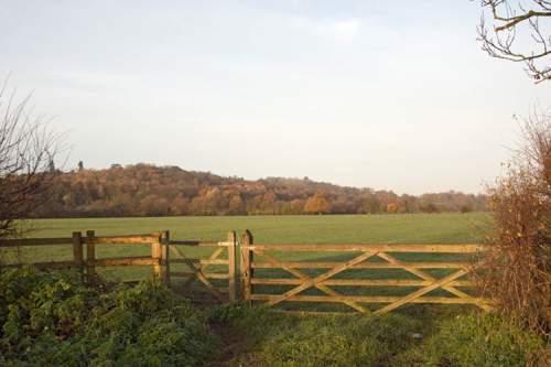 Runnymede meadow Surrey