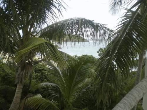 St maarten St Martin Island