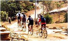 mountain biking Activities